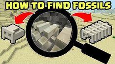 Minecraft PE Fossils
