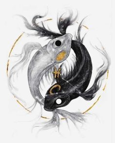 Yin Yang, Koi, Pretty Pictures, Sagittarius, Anime, Paper Place, Isfp, Giclee Print, Larger