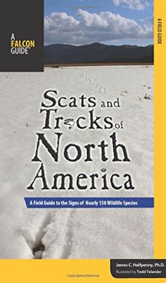Scats and Tracks of North America: A Field Guide To The Signs Of Nearly 150 Wildlife Species (Scats and Tracks Series) by James Halfpenny http://www.amazon.com/dp/0762748427/ref=cm_sw_r_pi_dp_VAICwb1C0ABQ9
