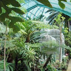 Un jardin tropical comme si  vous êtiez à Rio aux Serres d'Auteuil