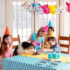 Celebrate the birthday of your family pet with @Phyllis Garcia magazine 's party plan, complete with goofy games, yummy chow, and more!