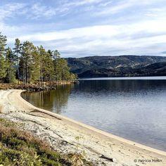 Livet är full av överraskningar. Just nu i Norge och...fotar...bla..... Mycket vackert landskap.  #Norge #nissedal #norway #naturelovers #nature #beautifulscenery #landscape