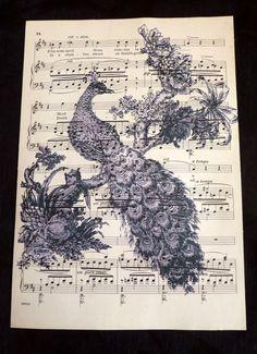 peacock music sheet