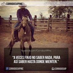 Siempre funciona.!   ____________________ #teamcorridosvip #corridosvip #corridosybanda #corridos #quotes #regionalmexicano #frasesvip #promotion #promo #corridosgram