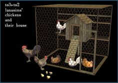 Chicken house with chickens - ts3 to ts2 conversion of Lunasims set