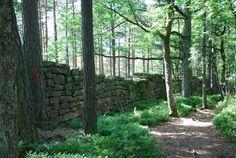 Le Mur Païen au Mont Sainte-Odile - #Alsace