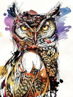 Owl Sounds by Abby Diamond. An art poster print of a wise hoot owl. Bird Line Drawing, Bird Drawings, Owl Watercolor, Watercolor Paintings, Owl Art, Bird Art, Painting Prints, Art Prints, Owls