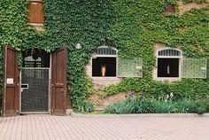 An ivy covered brick horse barn in Domäne Mechthildshausen.