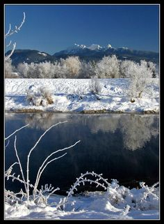 This photo from British Columbia, Western is titled 'Polder Morning'. Amazing Places, Beautiful Places, Fraser Valley, O Canada, Beautiful Moments, British Columbia, The Good Place, Westerns, North America
