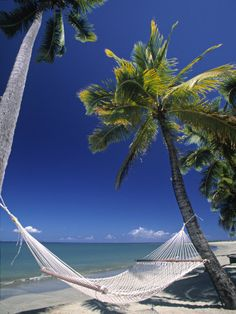 Hammock on Beach, Danarau, Viti Levu, Fiji Photographic Print Paradise Island, Island Life, Vacation Destinations, Dream Vacations, Fiji Beach, Sand Beach, Beach Babe, South Padre Island, Beautiful Places In The World