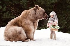 Jaw-dropping pictures show an enormous grizzly bear cuddling up to children in the forest in Moscow, Russia Polar Bear On Ice, Baby Animals, Cute Animals, Bear Character, Baby Goats, Kid Poses, Poses For Pictures, Brown Bear, Pet Portraits