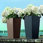 Cubico, todella iso ruukku 10 litran altakastelusäiliöllä. Tässä viihtyy isokin kasvi pitkillä kasteluväleillä.