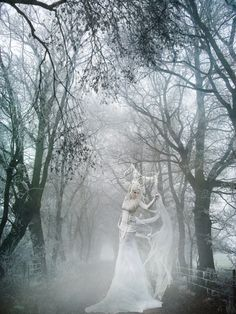 Winter dreams by Martine Gaillard, via Behance