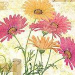 Reminiscence I by Sue Schlabach Pink Orange Flower Art Print- 12x12