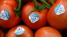 """If you See Number """"8"""" on the Label of the Fruit, Do not Buy it! Here's Why …"""