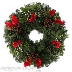 "Fernhill Festive Design Wreath 24""  http://www.domyownpestcontrol.com/fernhill-festive-design-wreath-24-p-12323.html"