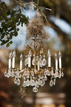 Vintage chandelier hanging from an oak tree—love it for an outdoor wedding. (Photo by Woodland Fields Photography) Crystal and Crates Vintage Rentals has many styles of chandeliers Wedding Props, Wedding Songs, Wedding Book, Wedding Ideas, Dream Wedding, Wedding Wishes, Wedding Details, Wedding Ceremony, Wedding Stuff