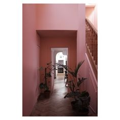 Pink And Green, Purple, East London, First Home, Decorating Ideas, Rooms, Interiors, Bedrooms, Coins