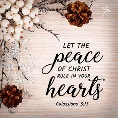 Colossians Let the peace of Christ rule in your hearts. Scripture Verses, Bible Verses Quotes, Bible Scriptures, Faith Quotes, Scripture Images, Christian Art Gifts, Christian Life, Christmas Quotes, Christmas Thoughts