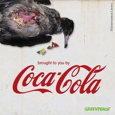 Even though this bird's stomach was full, it starved to #death. Inside? A #mixture of #discarded #bottle #caps and #plastic. Scientists estimate that between a quarter and a third of #marine plastic #pollution comes from the #drinks #industry. But instead of helping to solve this problem, #Coca #Cola is taking Australia's Northern Territories #Government to #court over a #recycling scheme! Think it's outrageous too?