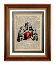 No 417 Between Two Lungs Original Anatomy Print on by AvantPrint, $7.00