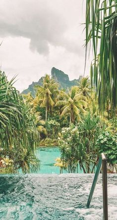 Starry Night Sky, Night Skies, Bora Bora French Polynesia, Four Seasons Bora Bora, Tahiti Islands, Nature Photography, Travel Photography, Adventure Aesthetic, Overwater Bungalows