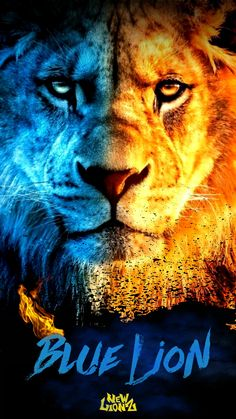 Blue Lion (New Lionz) iPhone/Android wallpaper