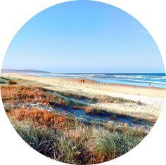 'Beach Summer' Sticker by © Karin Taylor Macro Photography, Summer Beach, Surfboard, Sticker, Iphone, Shirt, Dress Shirt, Surfboards, Stickers