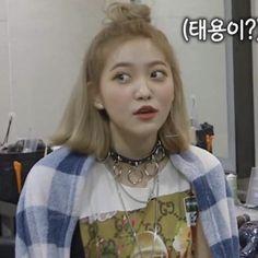 New memes kpop red velvet Ideas Seulgi, South Korean Girls, Korean Girl Groups, My Girl, Cool Girl, Rapper, Kim Yerim, New Memes, Funny Memes
