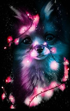 kindness and Peace Cute Galaxy Wallpaper, Wolf Wallpaper, Cute Wallpaper Backgrounds, Animal Wallpaper, Cute Cartoon Wallpapers, Baby Wallpaper, Cute Animal Drawings Kawaii, Cute Cartoon Animals, Anime Animals