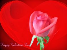 Happy Valentine's Day Facebook Friends | Happy Valentines Day Greetings to Wishing Facebook Friends | RSS Feeds