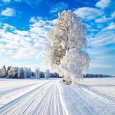 Norway...