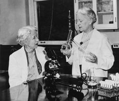In 1948, Elizabeth Lee Hazen and Rachel Fuller Brown teamed up to develop nystatin, the first non-toxic drug treatment for fungal infections in humans. Hazen and Brown were doing research for the Division of Laboratories and Research of the New York State Department of Health, when Hazen found a promising micro-organism in the soil of a friend's dairy farm. She named it Streptomyces noursei, after William Nourse, the farm's owner.