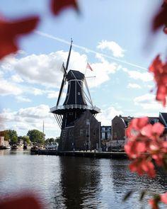 Een mooie stadswandeling door Haarlem.  Geen betere adviezen dan die van een local, een inwoner van een stad. Deze stadswandeling duurt in slakkengang maximaal 2 uur, exclusief museum- en winkelbezoek en terrasstops.