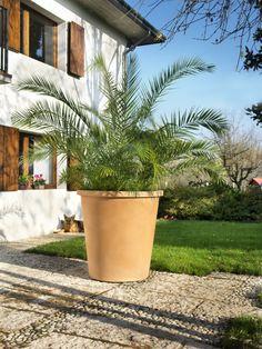 large flowet pots    http://terraform.pl/