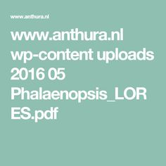 www.anthura.nl wp-content uploads 2016 05 Phalaenopsis_LORES.pdf
