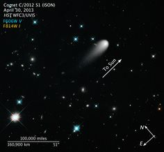 Galaxies, Comets, and Stars! Oh My!  In this Hubble Space Telescope composite image taken in April 2013, the sun-approaching Comet ISON floats against a seemingly infinite backdrop of numerous galaxies and a handful of foreground stars. The icy visitor, with its long gossamer tail, appears to be swimming like a tadpole through a deep pond of celestial wonders.