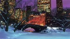 Image result for central park winter