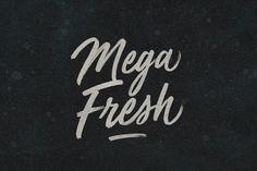 Mega Fresh by BLKBK on @creativemarket. Price $30 #handwrittenfonts #scriptfonts