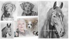 Tierzeichnungen nach Foto von Pferde, Hunde und Katzen.