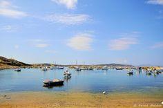 The fishing fleet Greek Islands, More Photos, Beautiful Images, Greece, Fishing, Beach, Water, Outdoor, Greek Isles