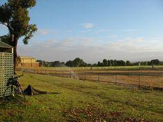 Darwin - Perth, Deel 11, Augusta - Perth, Australië | Reisreporter.nl