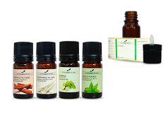 Comment éloigner les moustiques avec les huiles essentielles ?