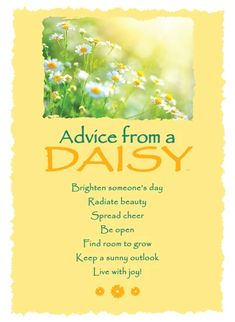 Advice from a Daisy Greeting Card - Blank – Your True Nature, Inc. Advice Quotes, Life Advice, Good Advice, Me Quotes, Daisy Quotes, Flower Quotes, Positive Thoughts, Positive Quotes, Uplifting Quotes