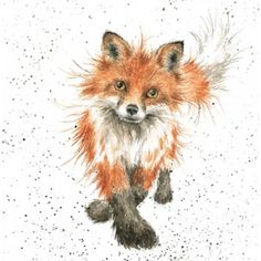 Wrendale Designs Country Set Greeting Card NEW The Foxtrot Fox Animal Paintings, Animal Drawings, Art Drawings, Watercolor Animals, Watercolor Paintings, Watercolour, Art Fox, Fuchs Baby, Fuchs Tattoo