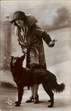 1930s old postcard with Belgian Sheepdog