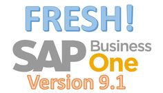 SAP Business One Ver 9.1 Reporting Feature Updates