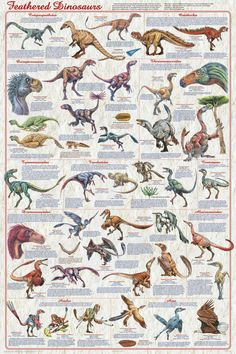 Feathered Dinosaurs, Dinosaur Posters, New Poster, Tyrannosaurus Rex, Rock Posters, Prehistoric, Art Education, Etsy, Families