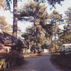 Herfst op Camping Bakkum!