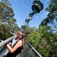 """If there were a report card for Wollongong it would surely read: """"plays well with others"""". That's because we offer something for everyone – from beach to bush… Zipline Tours, Things To Do, Walking, The Incredibles, Australia, Spaces, Explore, Adventure, Beach"""
